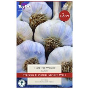 Taylors Garlic Solent Wight