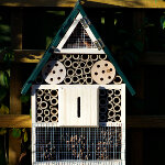 Greenkey Insect Hotel
