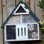 Greenkey Insect House