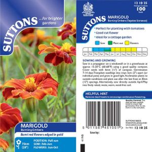 Suttons African Marigold Burning Embers