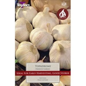 Taylors French Garlic Topadrome