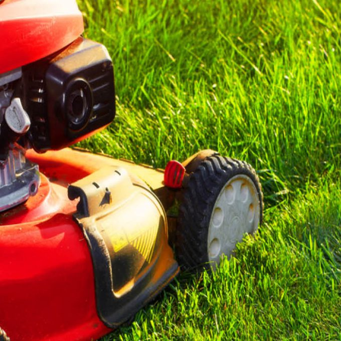 Try mowing lawns on a higher setting