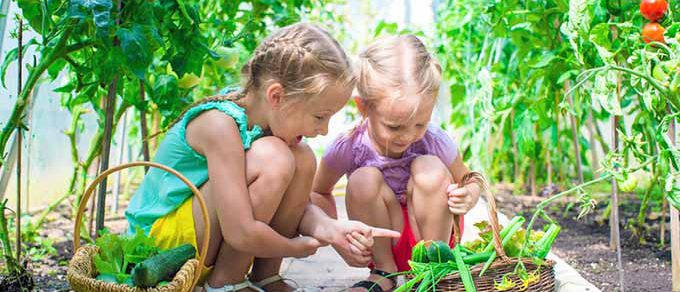 Featured image for 'Top 5: Gardening with Children'