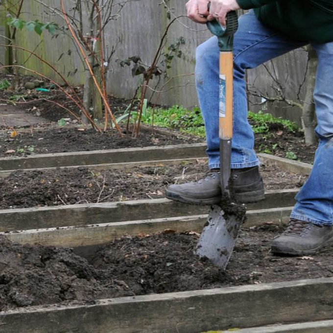 Start winter digging in the vegetable plot