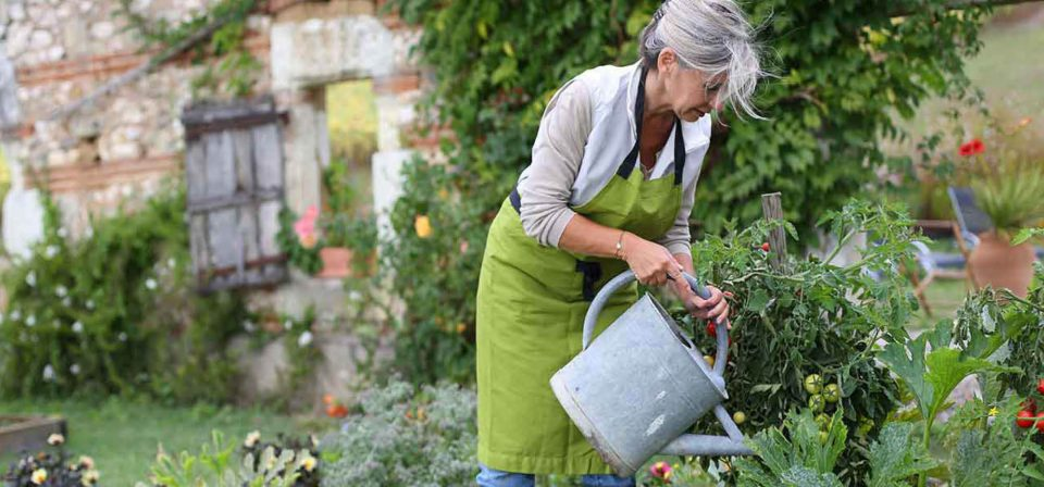 Watering the Garden is a good activity to get moving