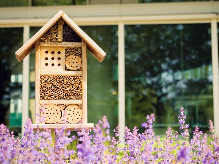 Make your own bee hotel to provide bees to the garden