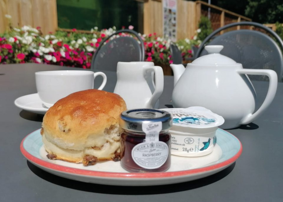 Afternoon Tea at Hybrid Tea Room at Coolings Wych Cross Garden Centre