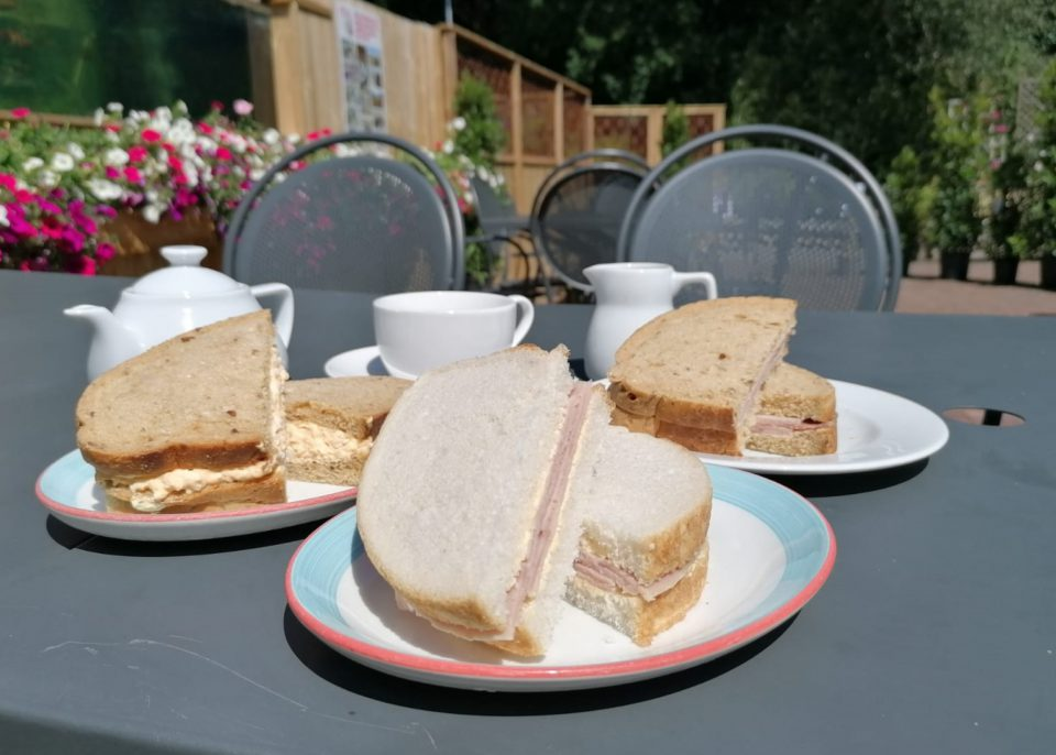 Sandwiches at Hybrid Tea Room at Coolings Wych Cross Garden Centre