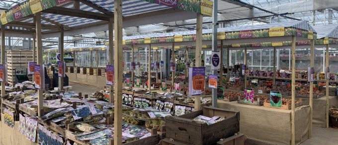 Featured image for 'Bulb Market'