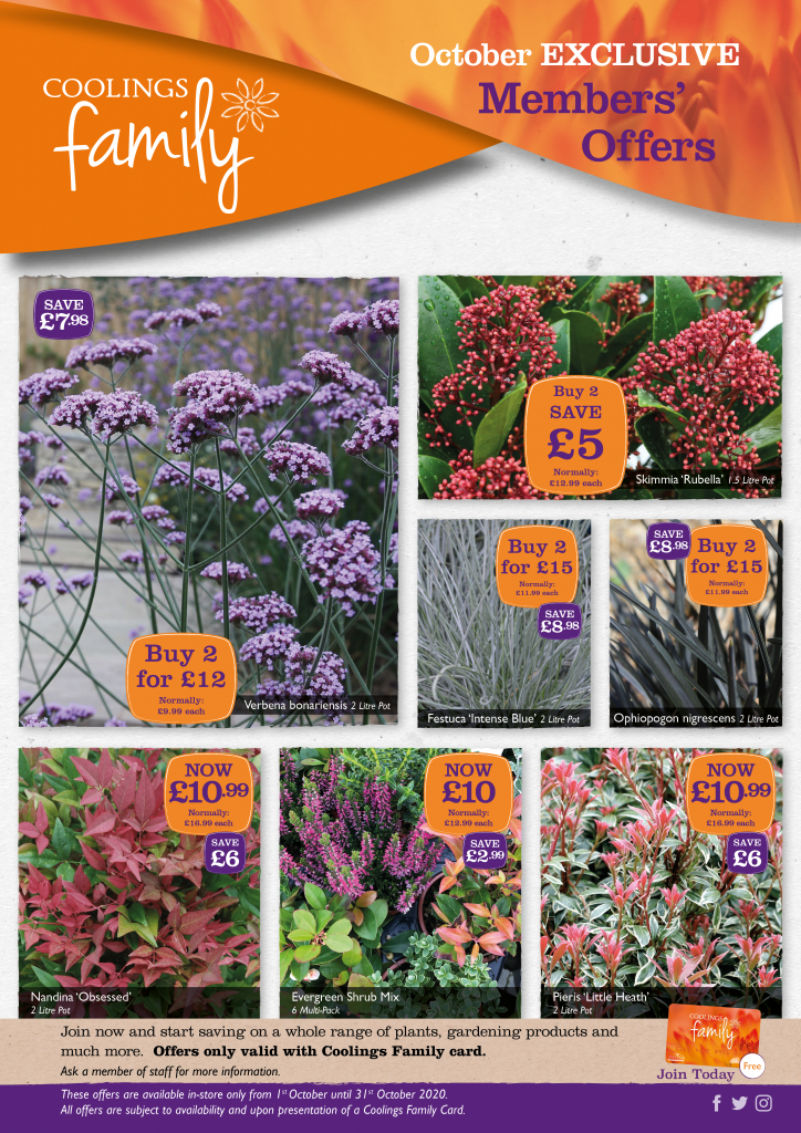 Coolings Family Plant Offers - October
