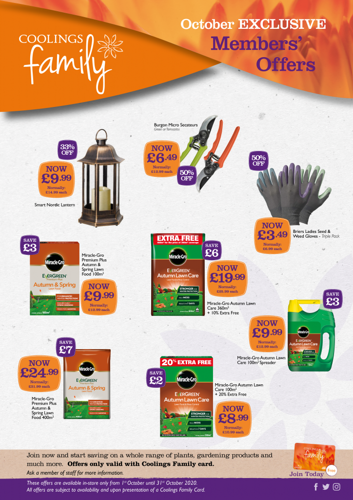 Coolings Family Shop Offers - October