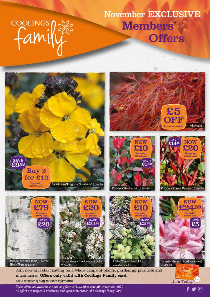 Coolings Family Plant Offers - November