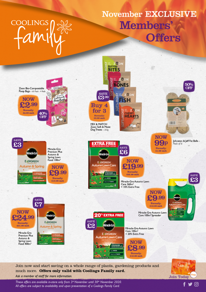 Coolings Family Shop Offers - November